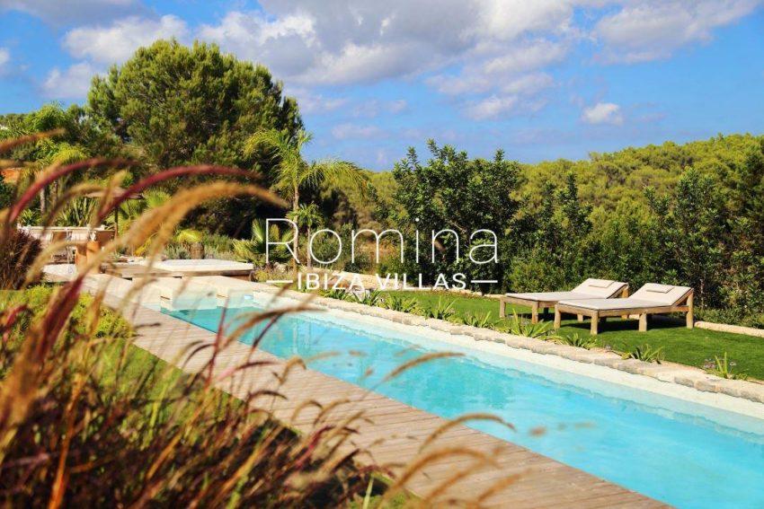 can aloe-2swimming pool garden1