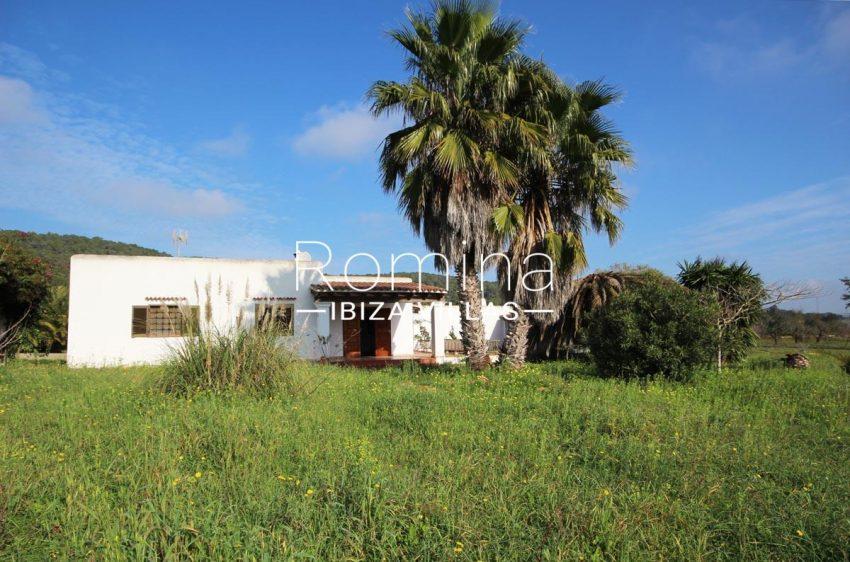 casa campina-2house garden palm