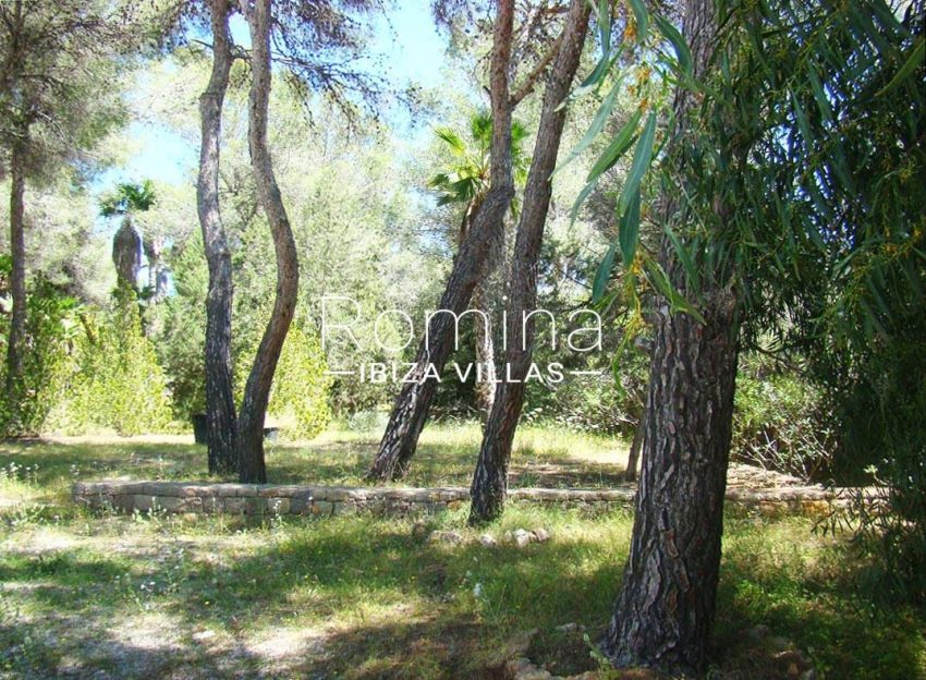 can carles ibiza-2garden trees