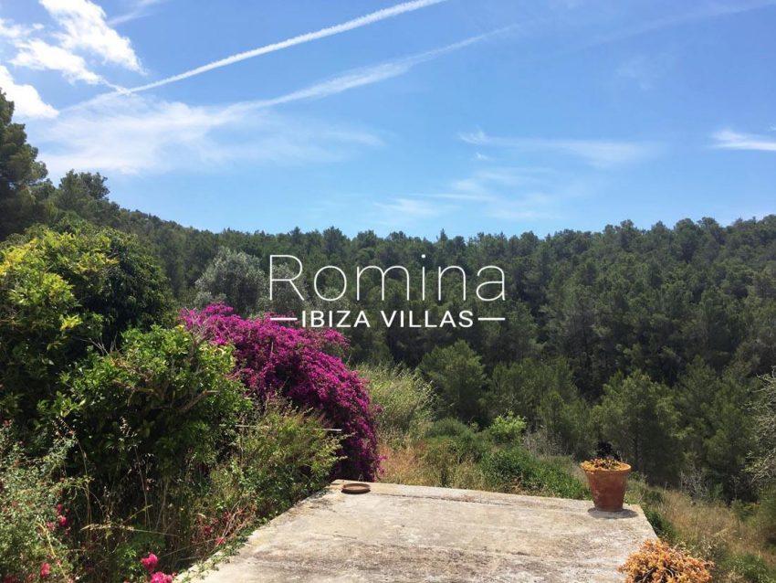 finca albaricoque ibiza-1terrace view trees