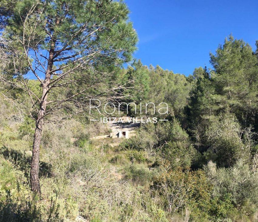 finca albaricoque ibiza-2water well