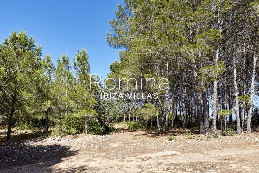 villa samani ibiza-2garden trees
