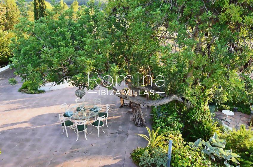 casa hiedra ibiza-2terrace trees