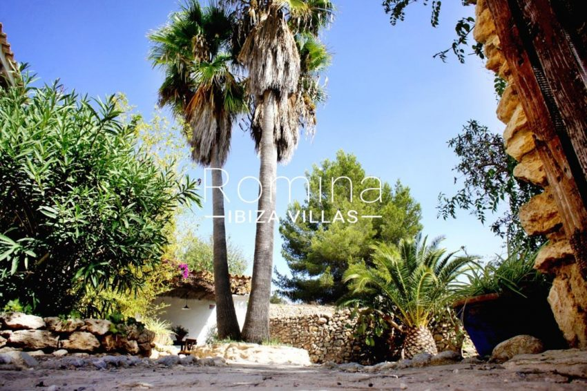 finca gibert ibiza-2palm trees