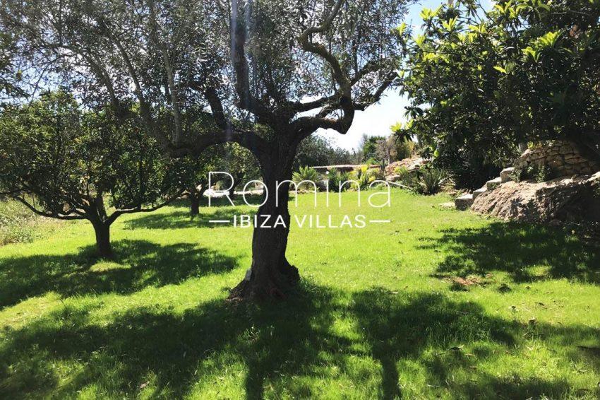 finca las palmeras ibiza-2garden