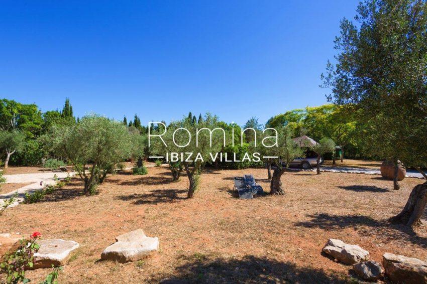 finca rafael ibiza-2garden olive trees