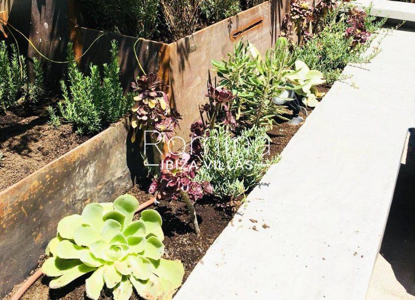 apto jardin ciudad-2garden plants2