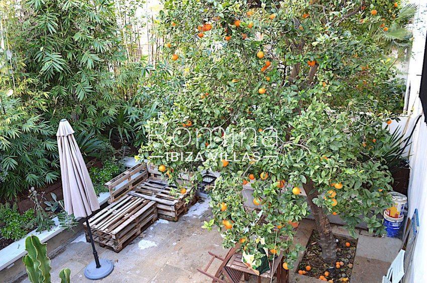 apto jardin ciudad-2garden tangerine tree