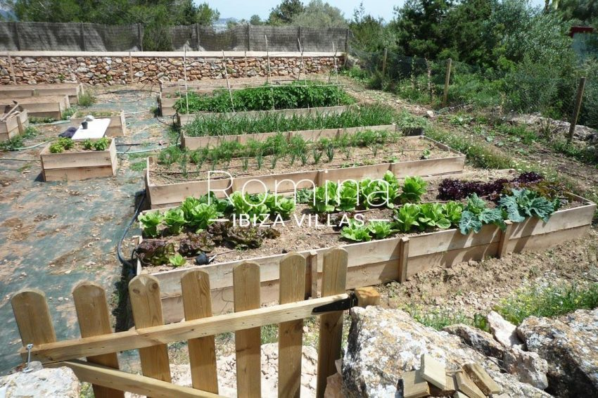 can puxet ibiza-2vegetable garden2