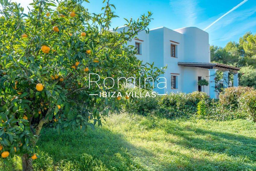 casa danny ibiza-2garden orange tree facade