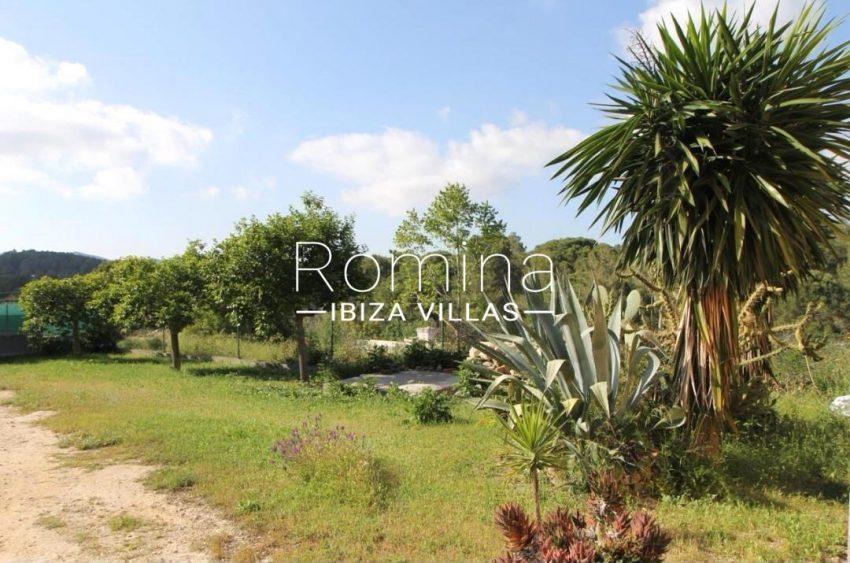 casa romero ibiza-2garden yuccas