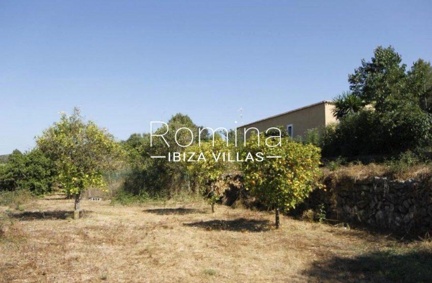 casa romero ibiza-2orchard