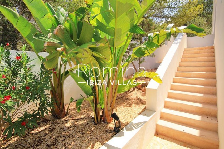 villa capricci ibiza-2stairs banana tree oleanders