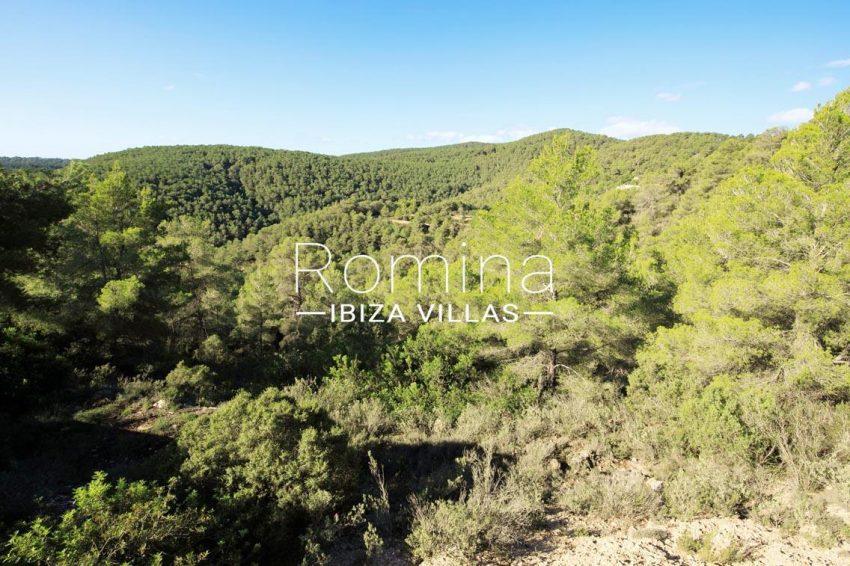 cana panera ibiza-1view hills
