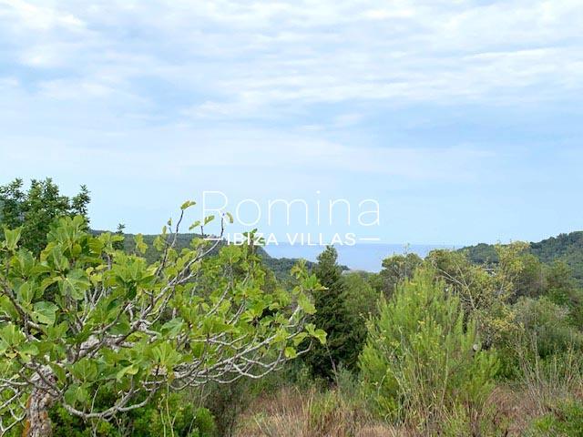 romina-ibiza-villas-rv-754-81-can-villam-1sea view