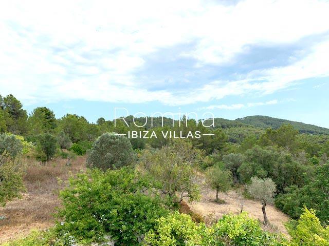 romina-ibiza-villas-rv-754-81-can-villam-2plot olive trees