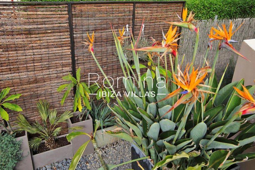 romina-ibiza-villas-rv-801-02-adosado-cosima-2garden flowers