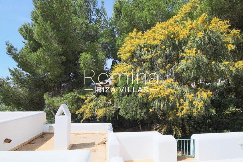 romina-ibiza-villas-rv-893-81-villa-mimosa-2mimosa tree